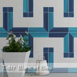 Tuhmbnail_T-817_Blanc et Bleu.jpg