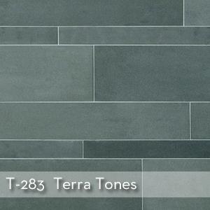 Thumbnail_T-283_Terra Tones.jpg