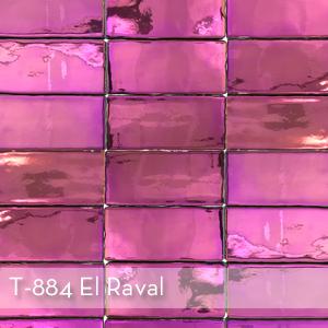 T-884 El Raval.jpg