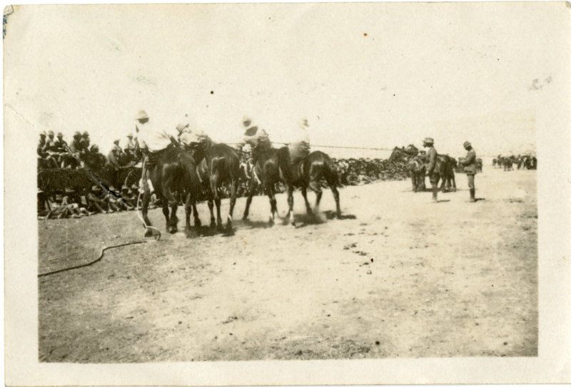 Tug-of-War on horseback