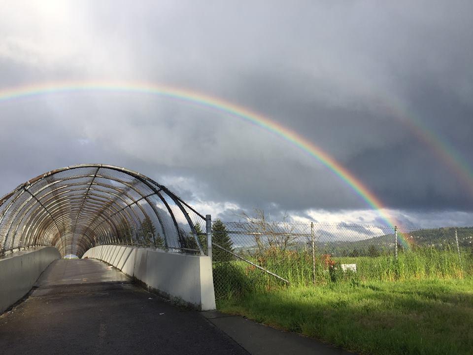 Lents Bridge Project Pic.jpg