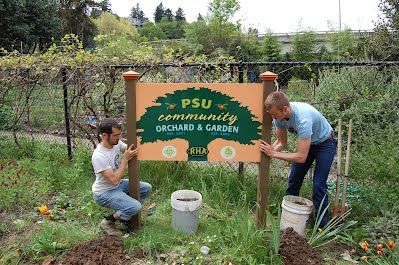 Installation of the community garden and orchard sign.