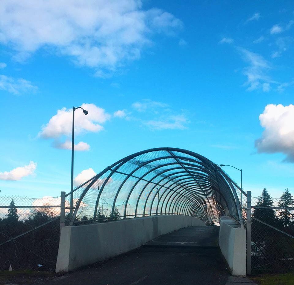 Lents Bridge Project 3.jpg