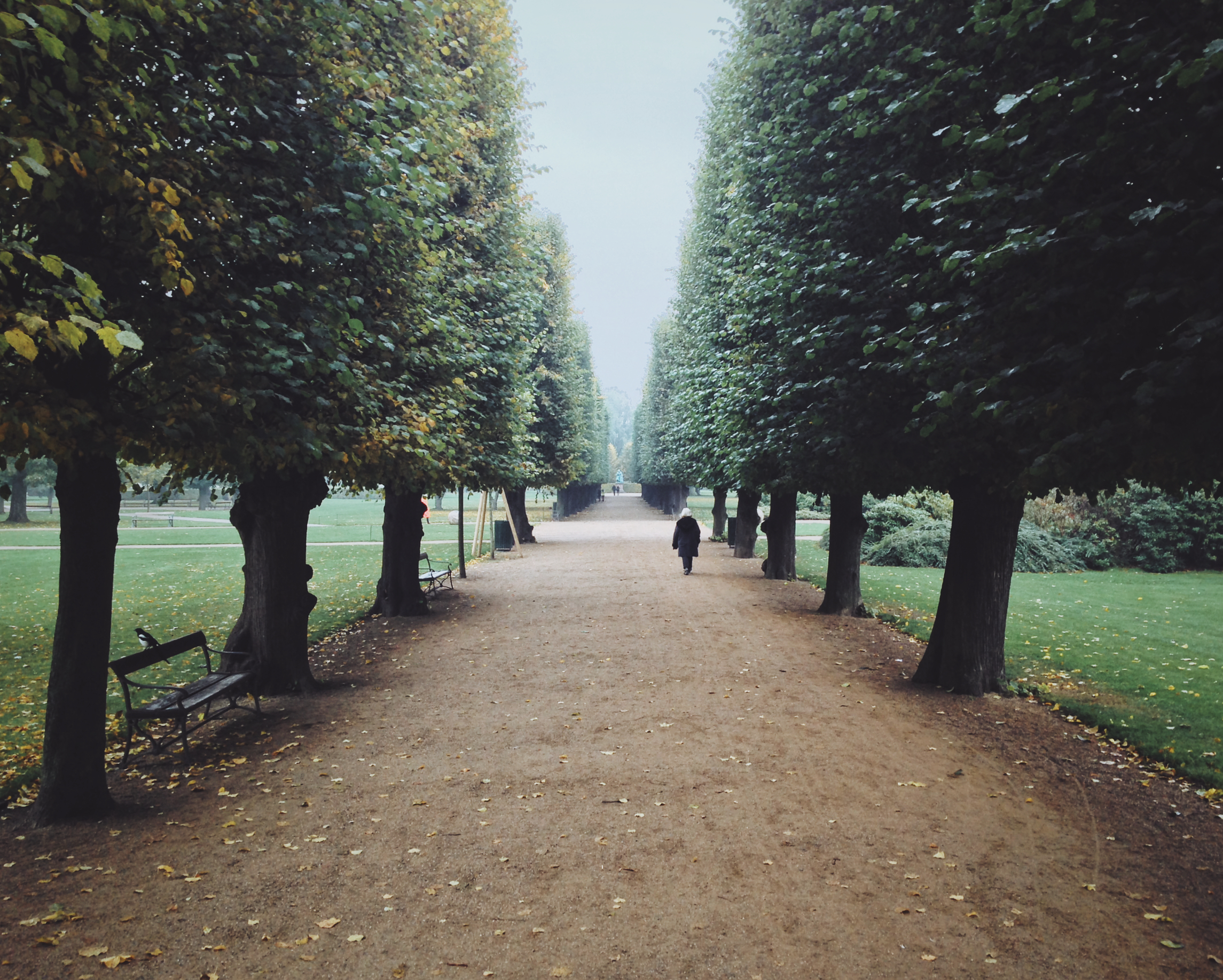 Copenhagen:the castle garden