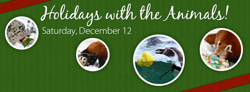 Holidays with the Animals! - 2015 Facebook Event Header