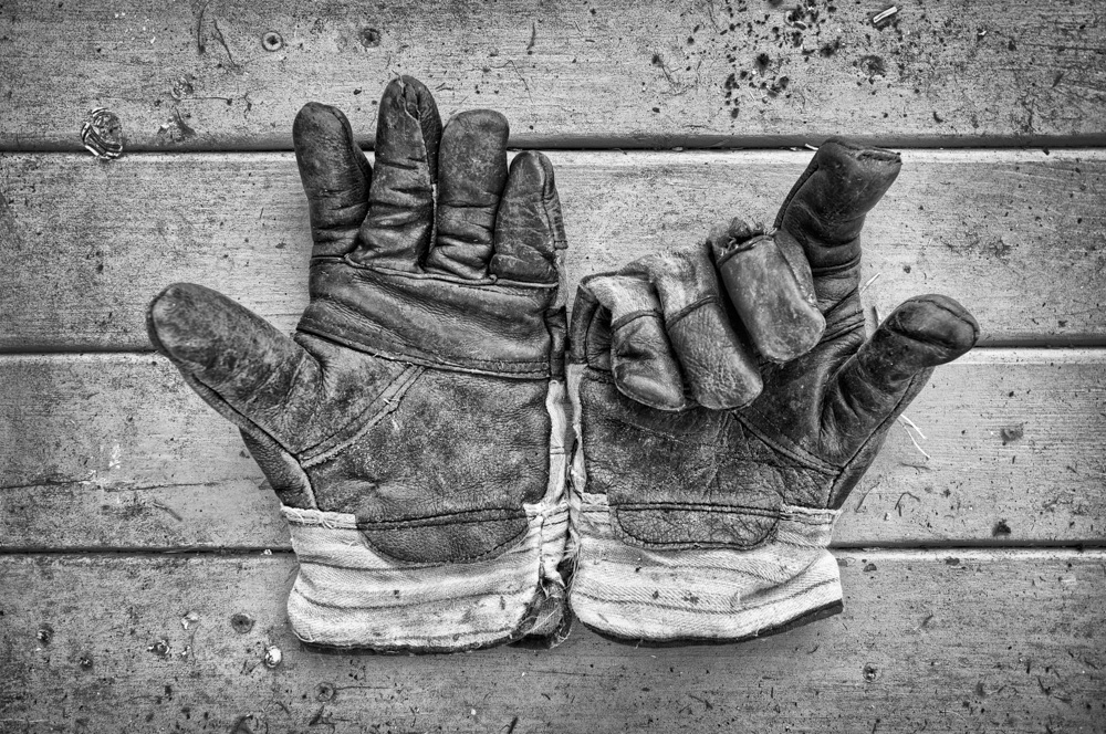 day_081_gloves_garden_0001.jpg