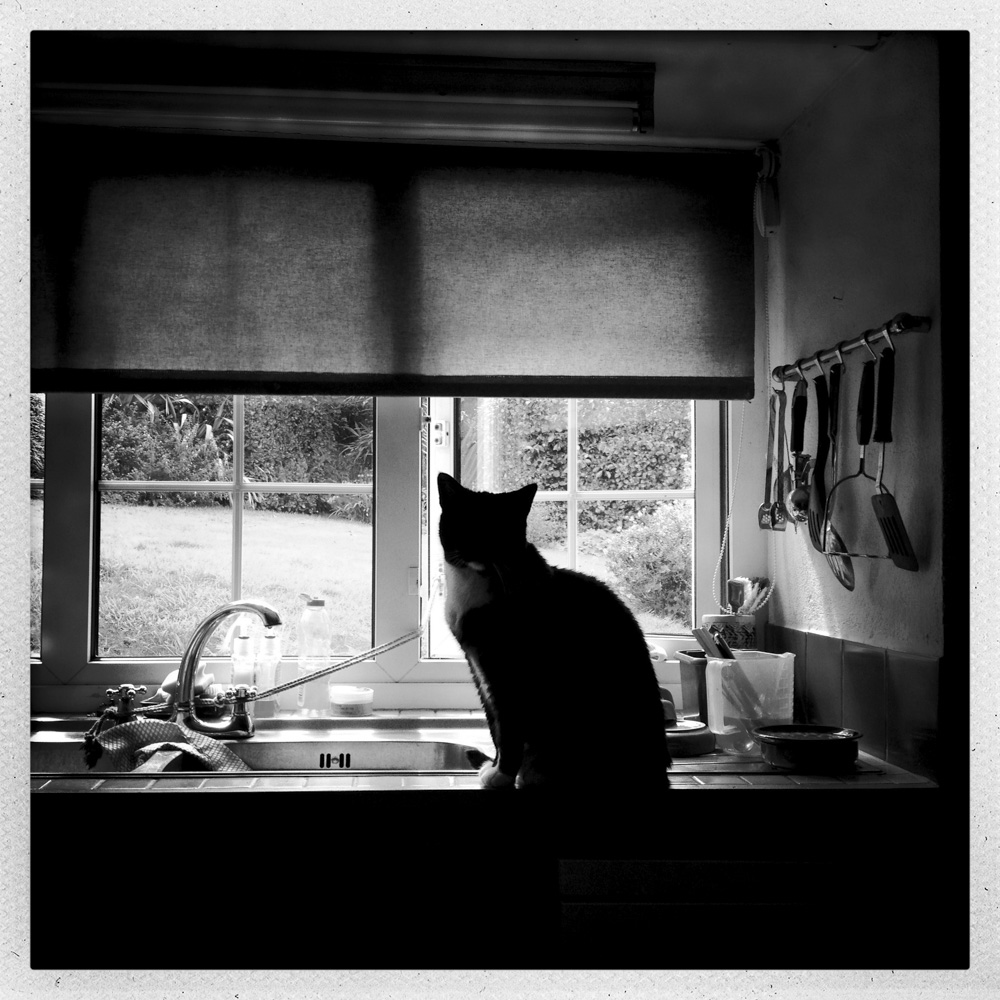 day_235_iphone_day_235_mono.jpg
