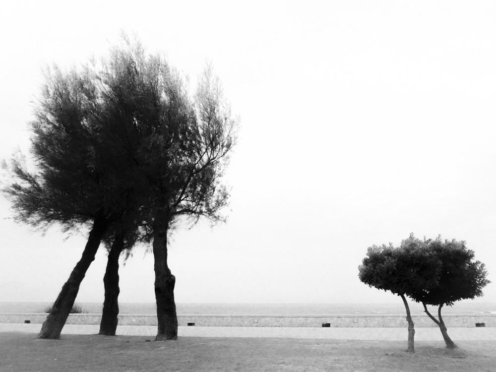 day_143_nk_italy_puglia_morcianodeleuca-3.jpg
