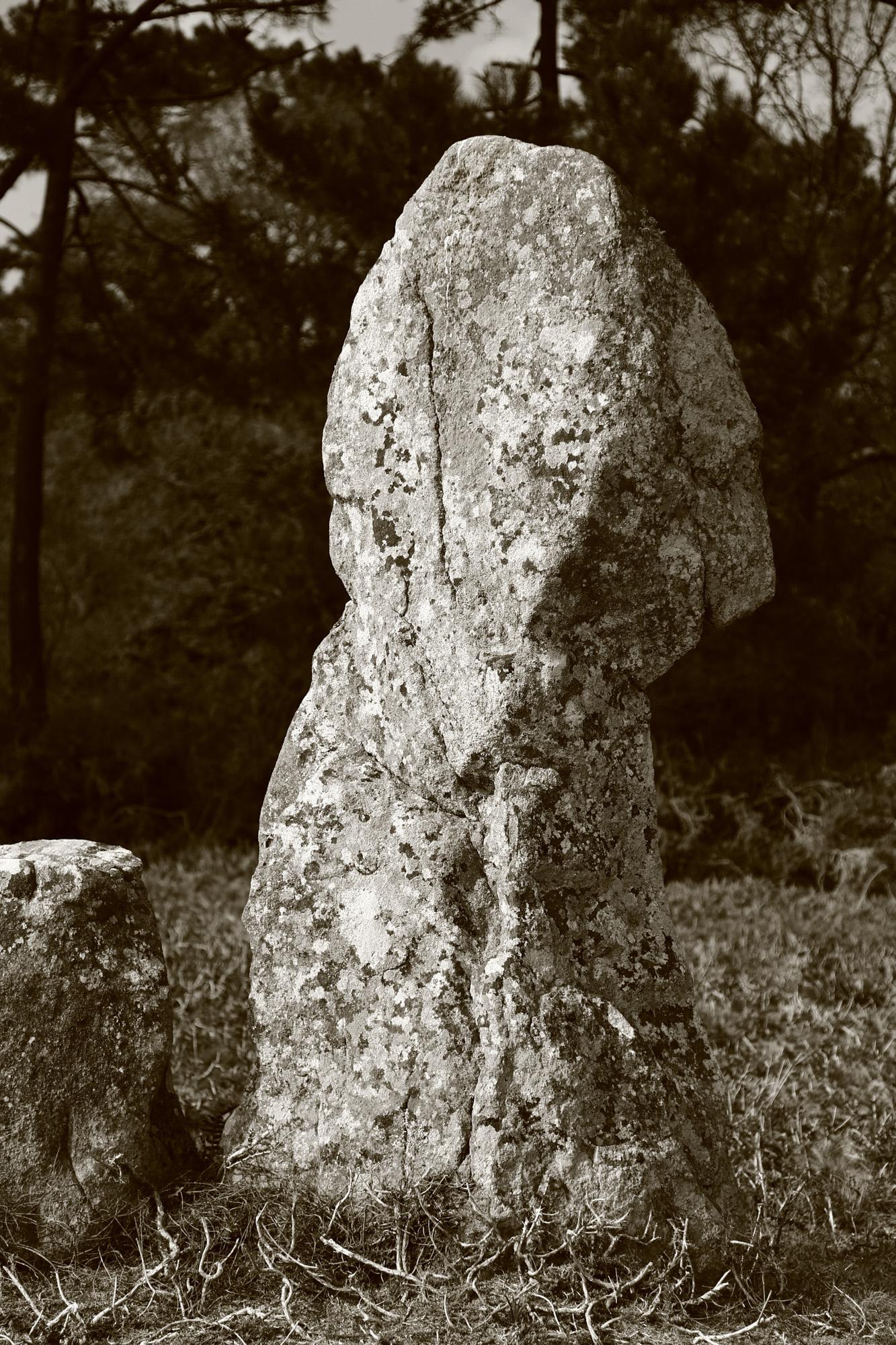 20160323_france_bretagne_carnac_stones-54.jpg