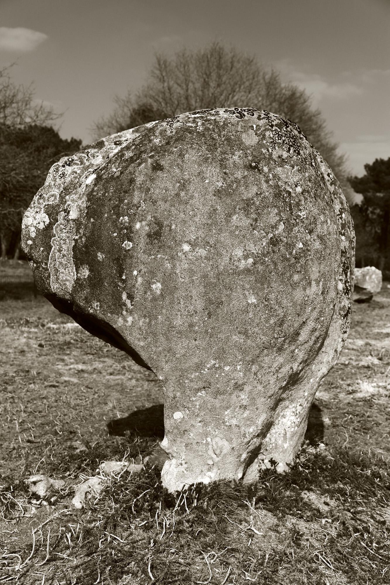 20160323_france_bretagne_carnac_stones-102.jpg