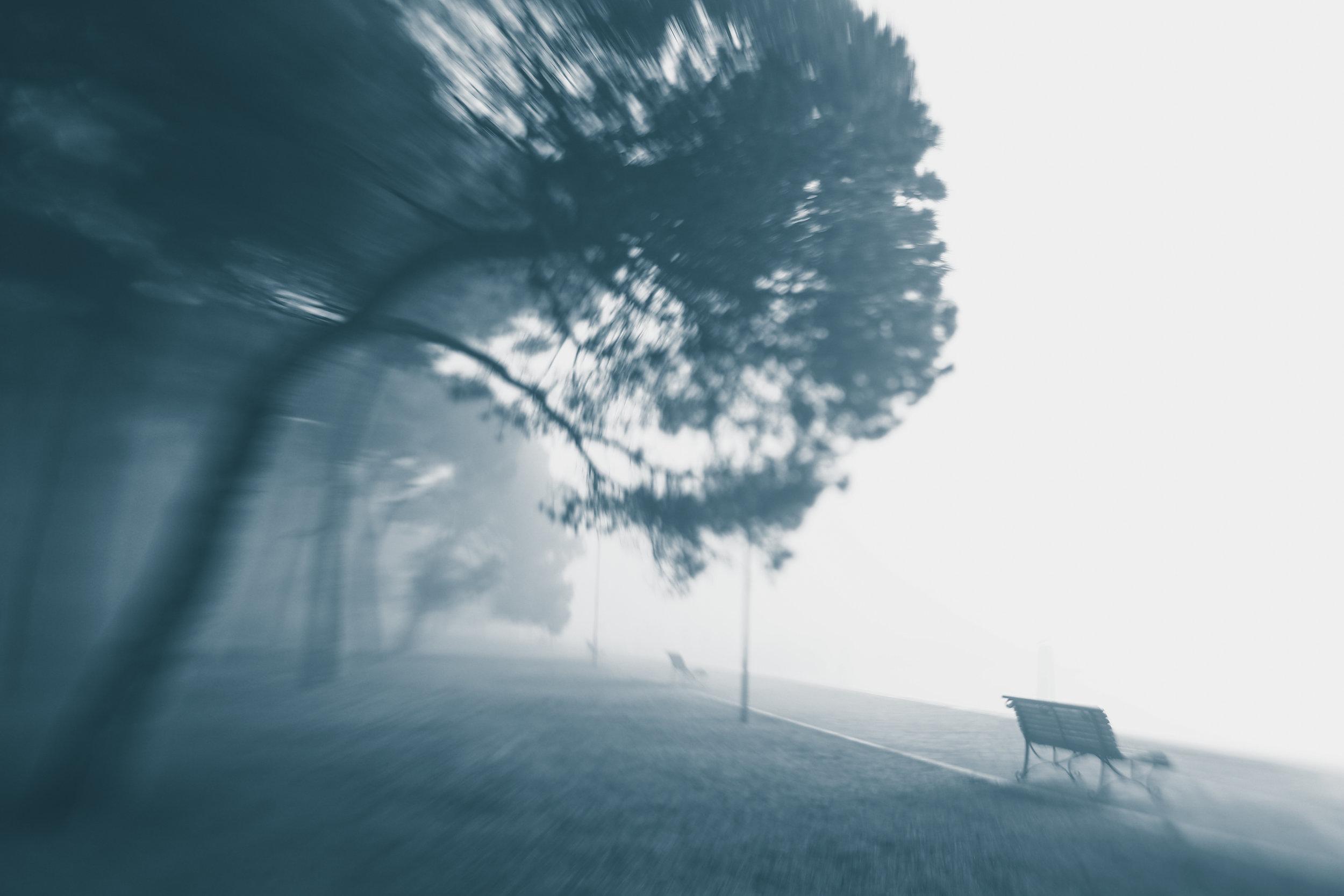 20181229_veniceLB_castello_fog-82.jpg
