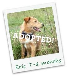 Eric_adopt.jpg