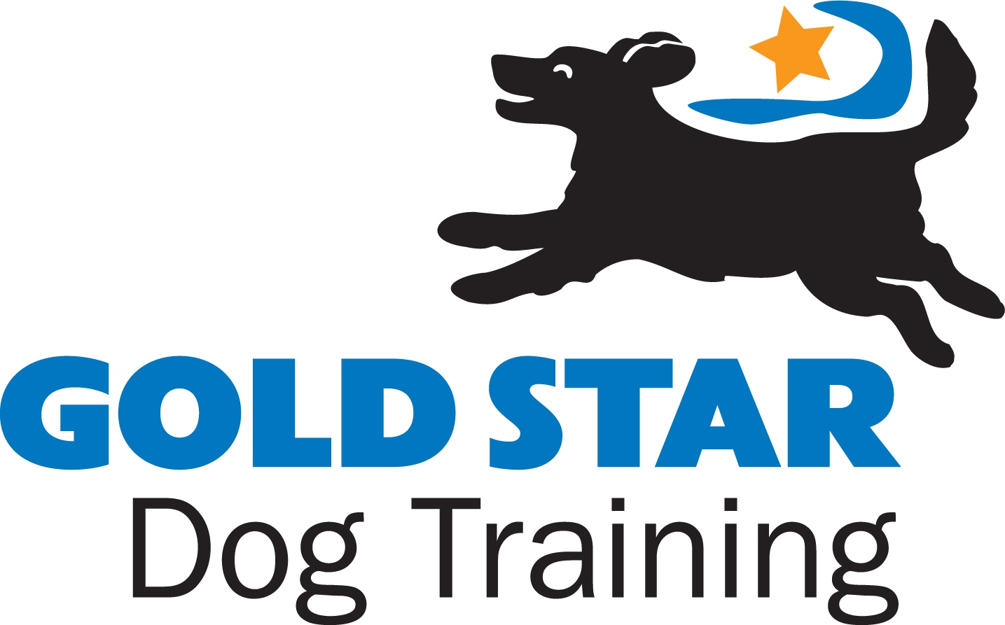 Gold Star_logo color.jpg