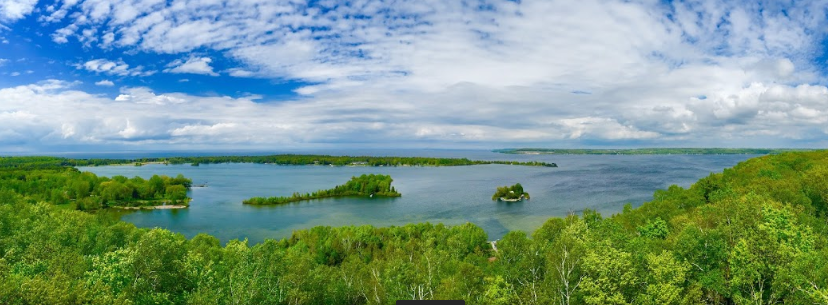 View from the Tower Trail observation tower // photo credit: Adam Niosi