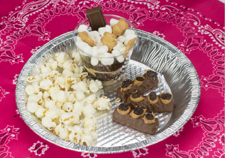 Camp out theme birthday party ideas