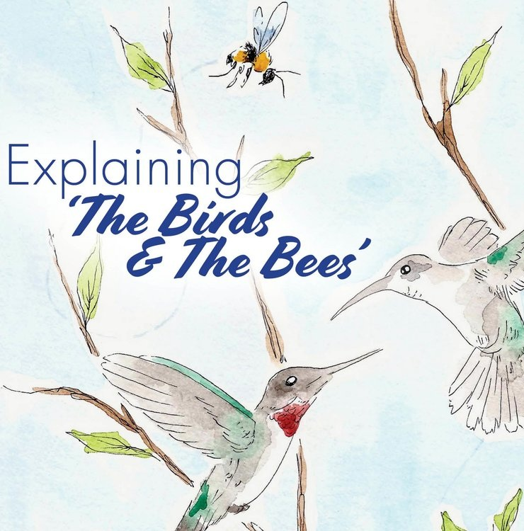 Explaining 'The Birds & The Bees'