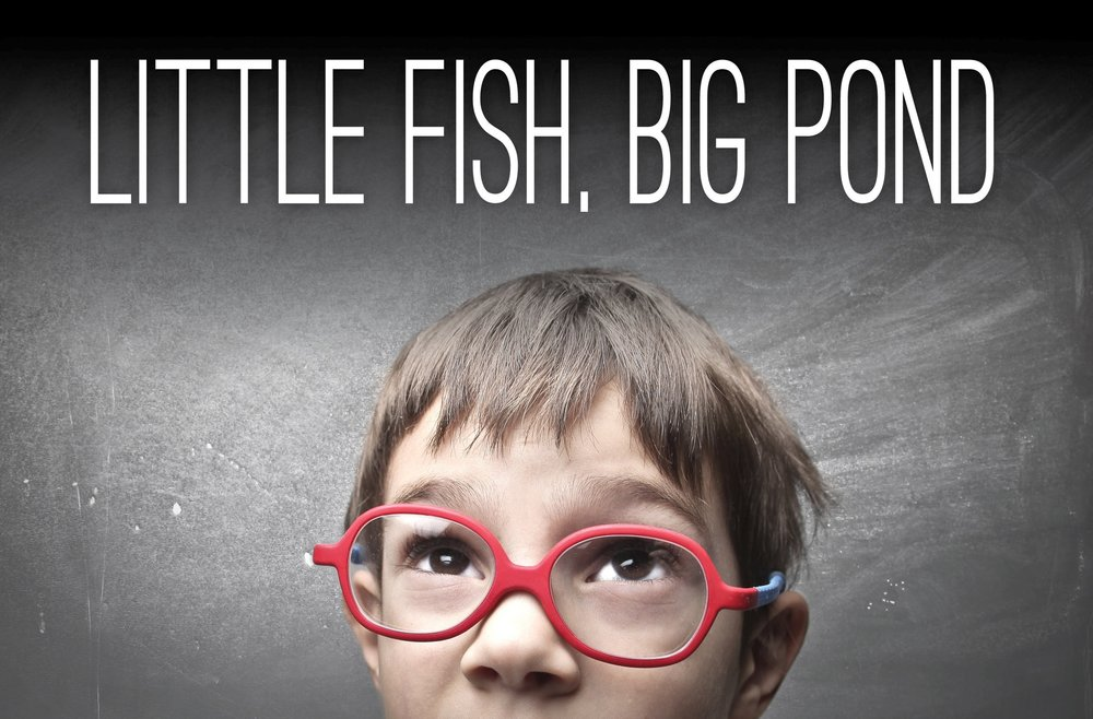 Little Fish, Big Pond