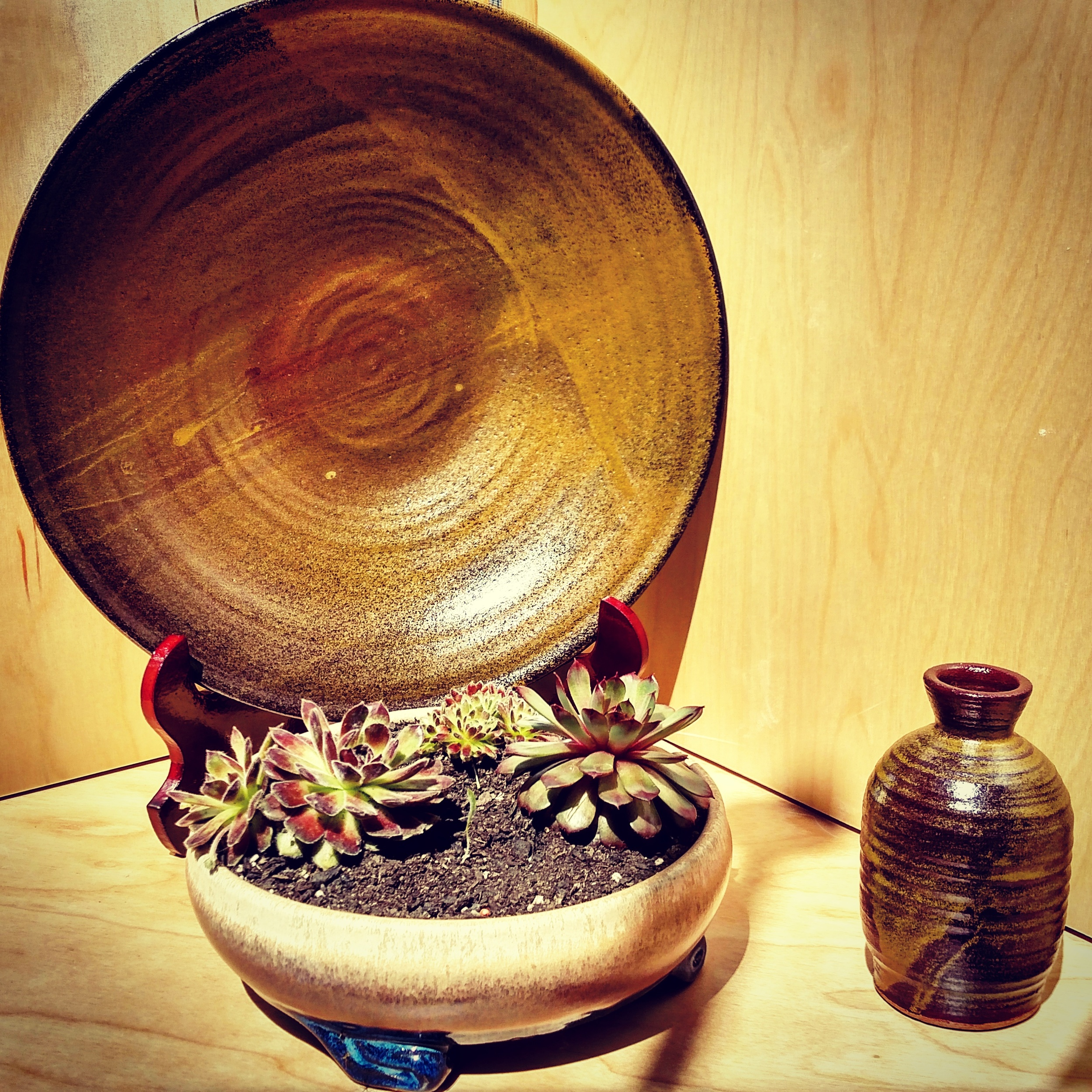 amber teadust display.jpg