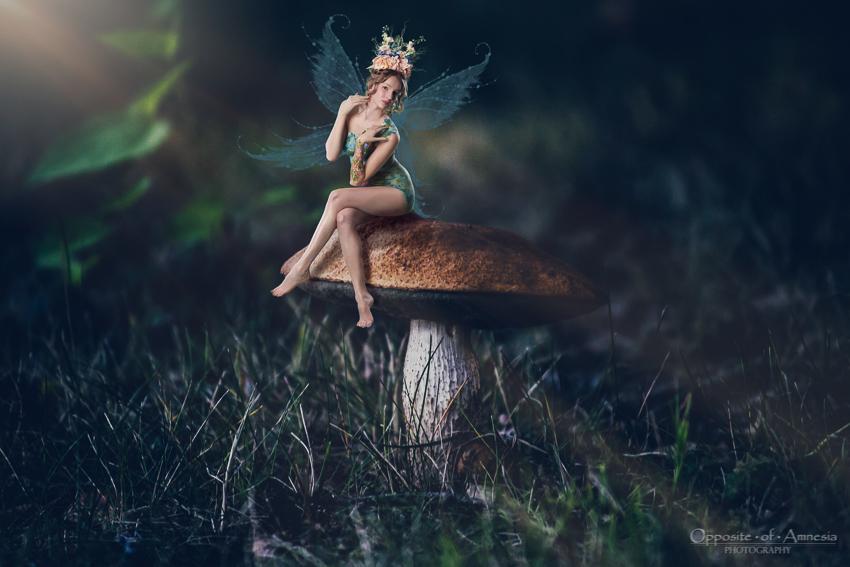 Toadstool Fairy