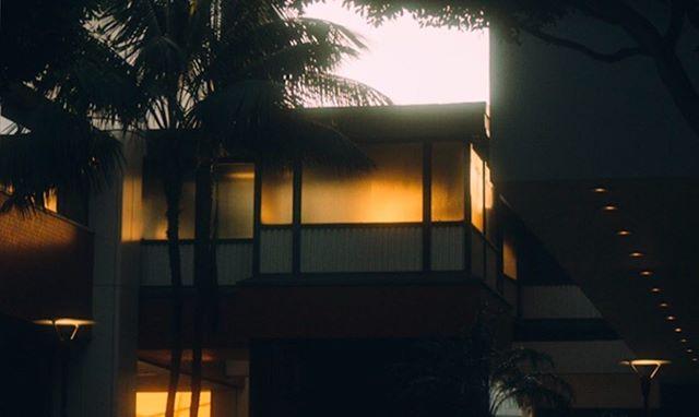 Warm glow in Santa Monica 🌞