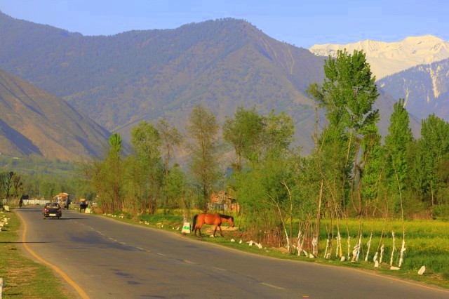 wide roads kashmir18.jpg
