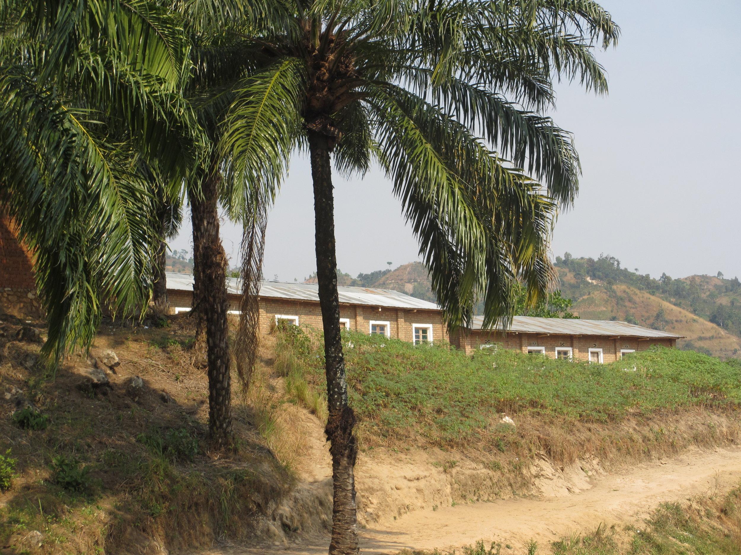 Omringet av palmer ligger barneskolen flott til i terrenget!