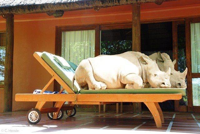 Thabo and Ntombi relaxing at Thula Thula