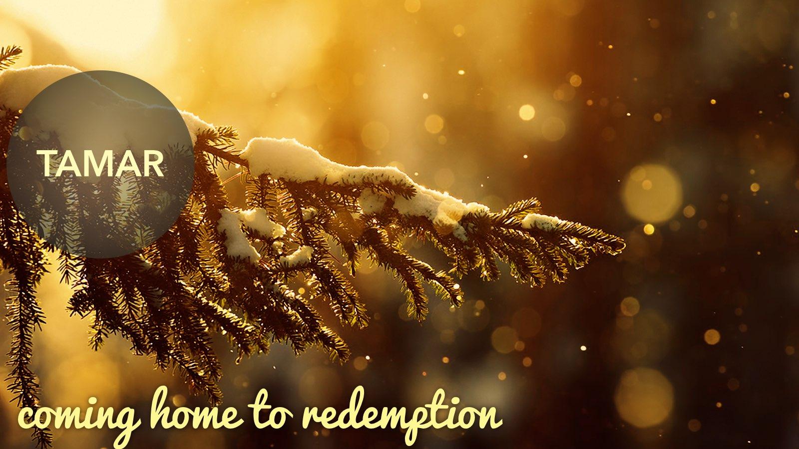 12.27.2015 Coming Home | Redemption | Matt 1.1-17.028.jpg