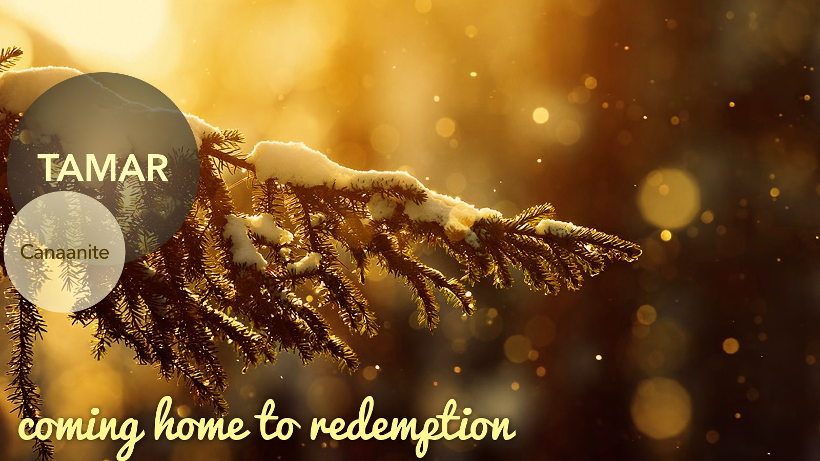 12.27.2015 Coming Home | Redemption | Matt 1.1-17.029.jpg