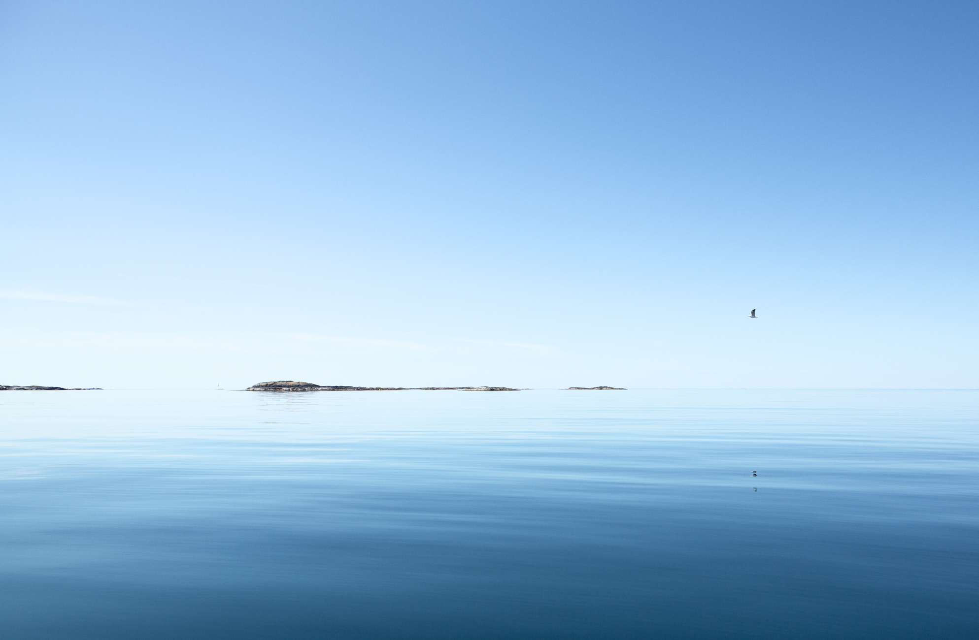 Islands - Survey #1, 2014 //  80 cm x 120 cm