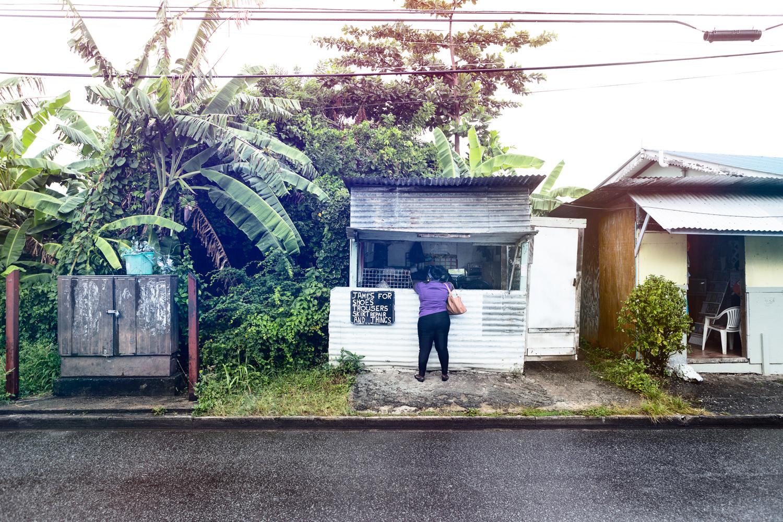 Tobago_08_2013_8208_Highres_reduziert.jpg