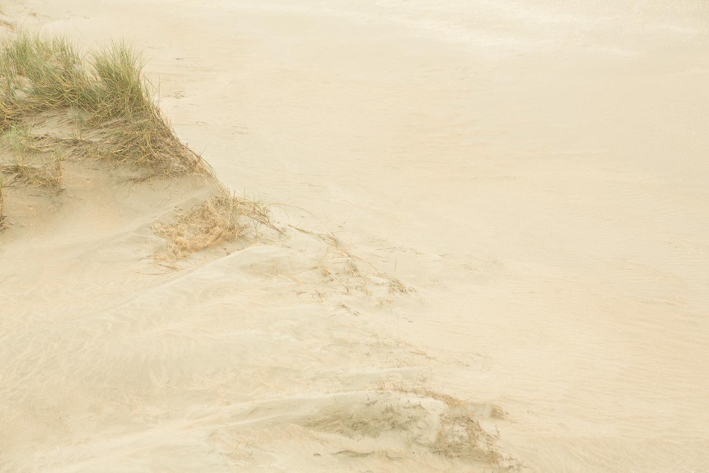 Dunes I, 2016 //  120 x 180 cm