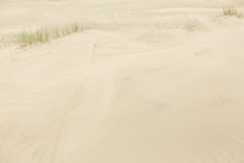 Dunes IV, 2016 //  120 x 180 cm