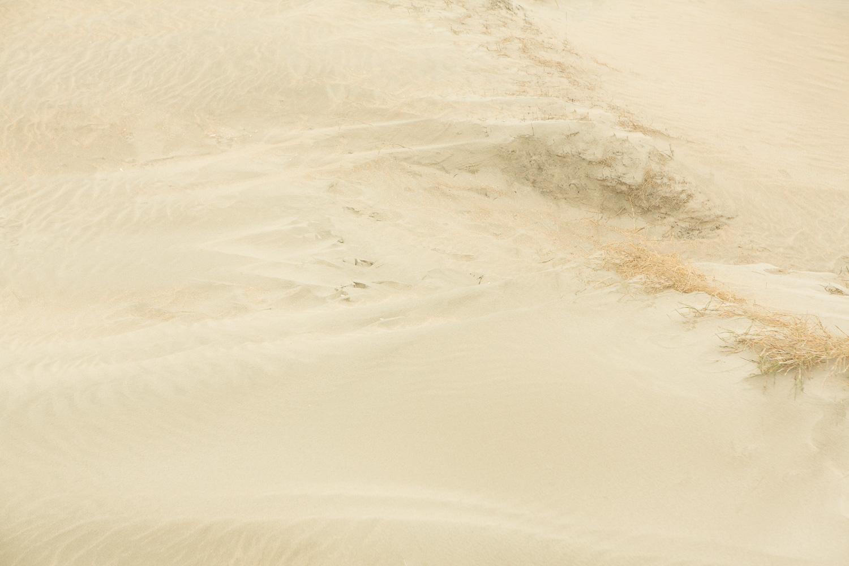 Dunes V, 2016 //  120 x 180 cm