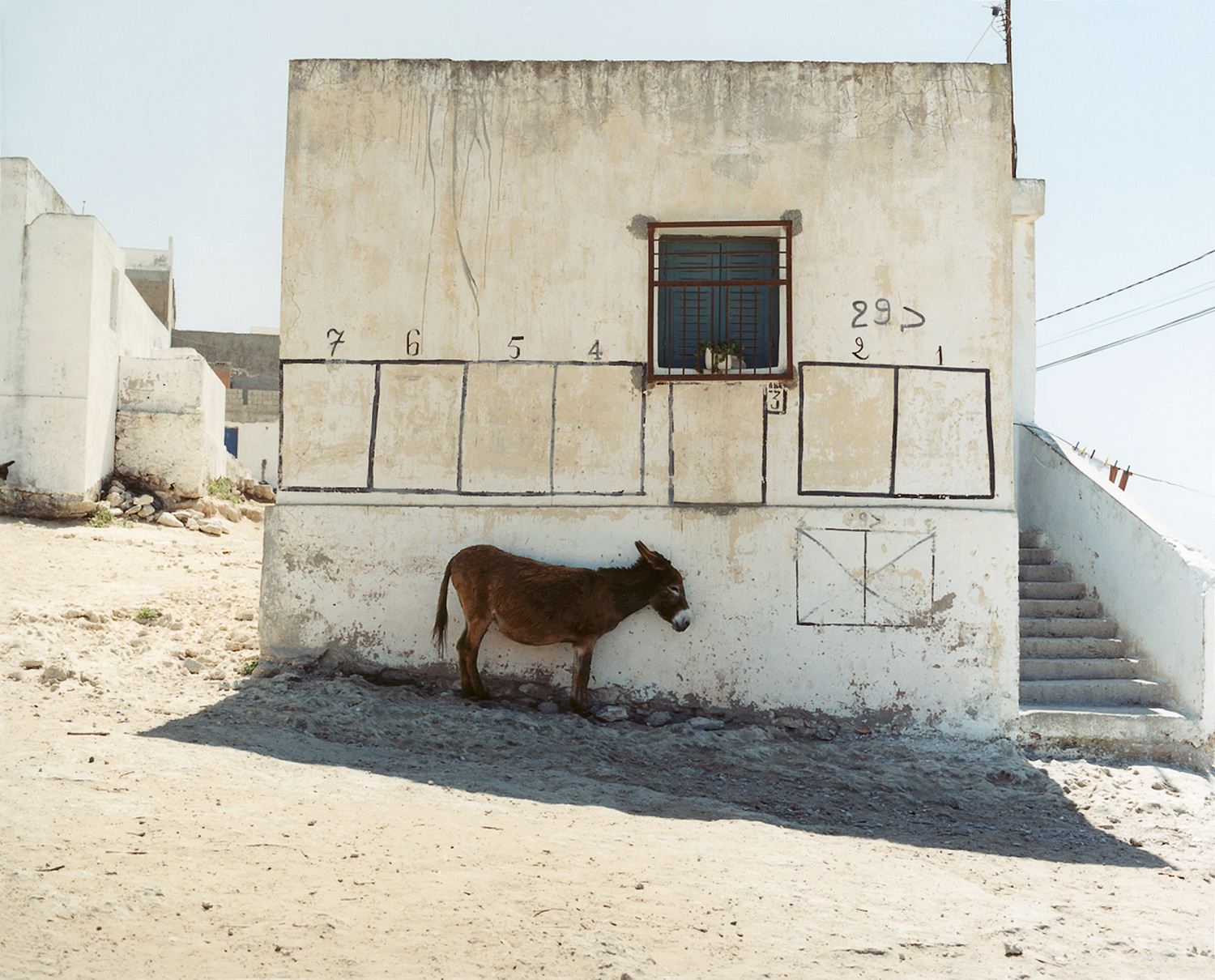 Hot Donkey, Morocco