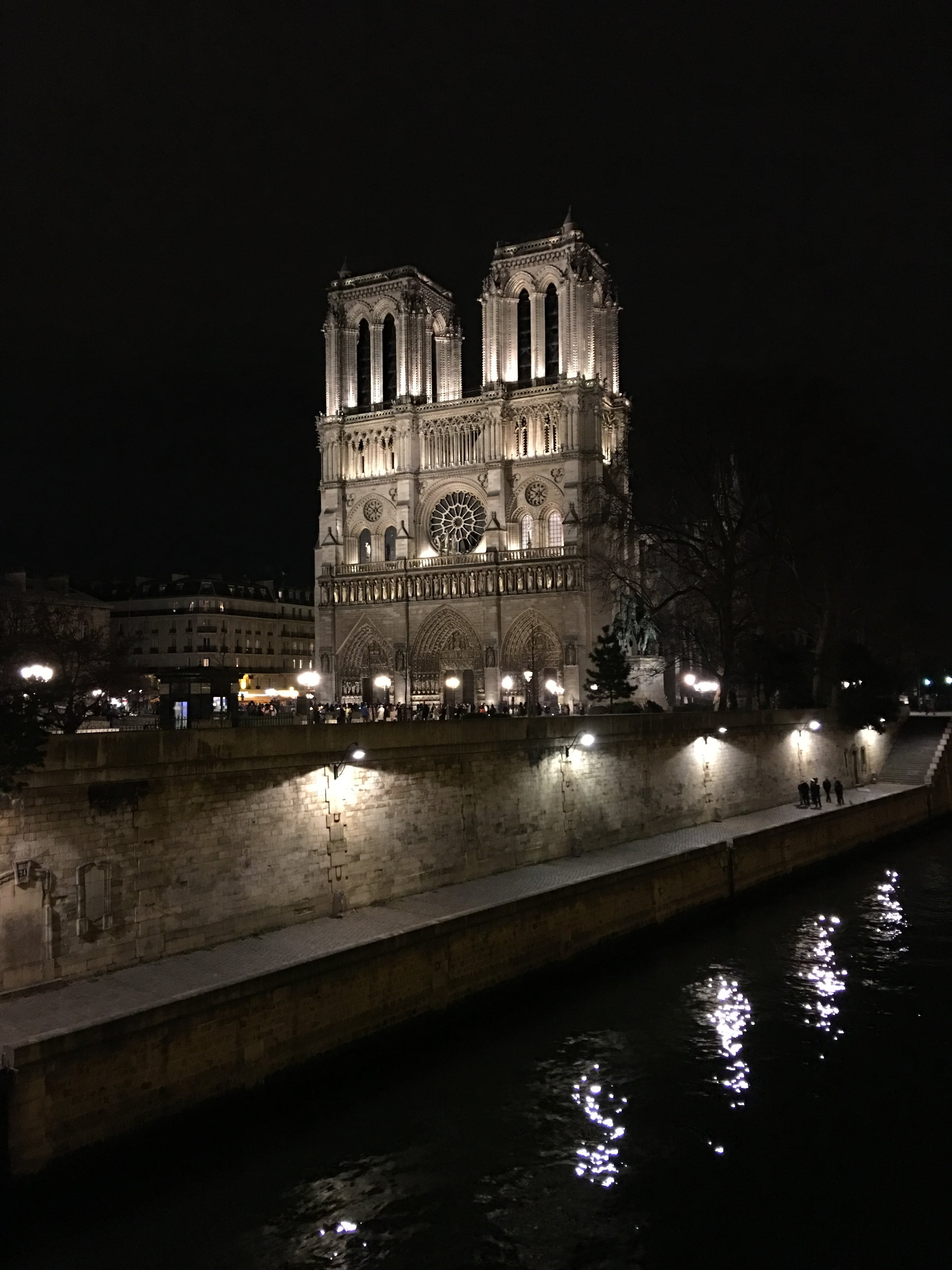 Notre Dame all lit up *Cool (and morbid) fact: that river right there, the Seine, is where Javert kills himself in Les Miserables*
