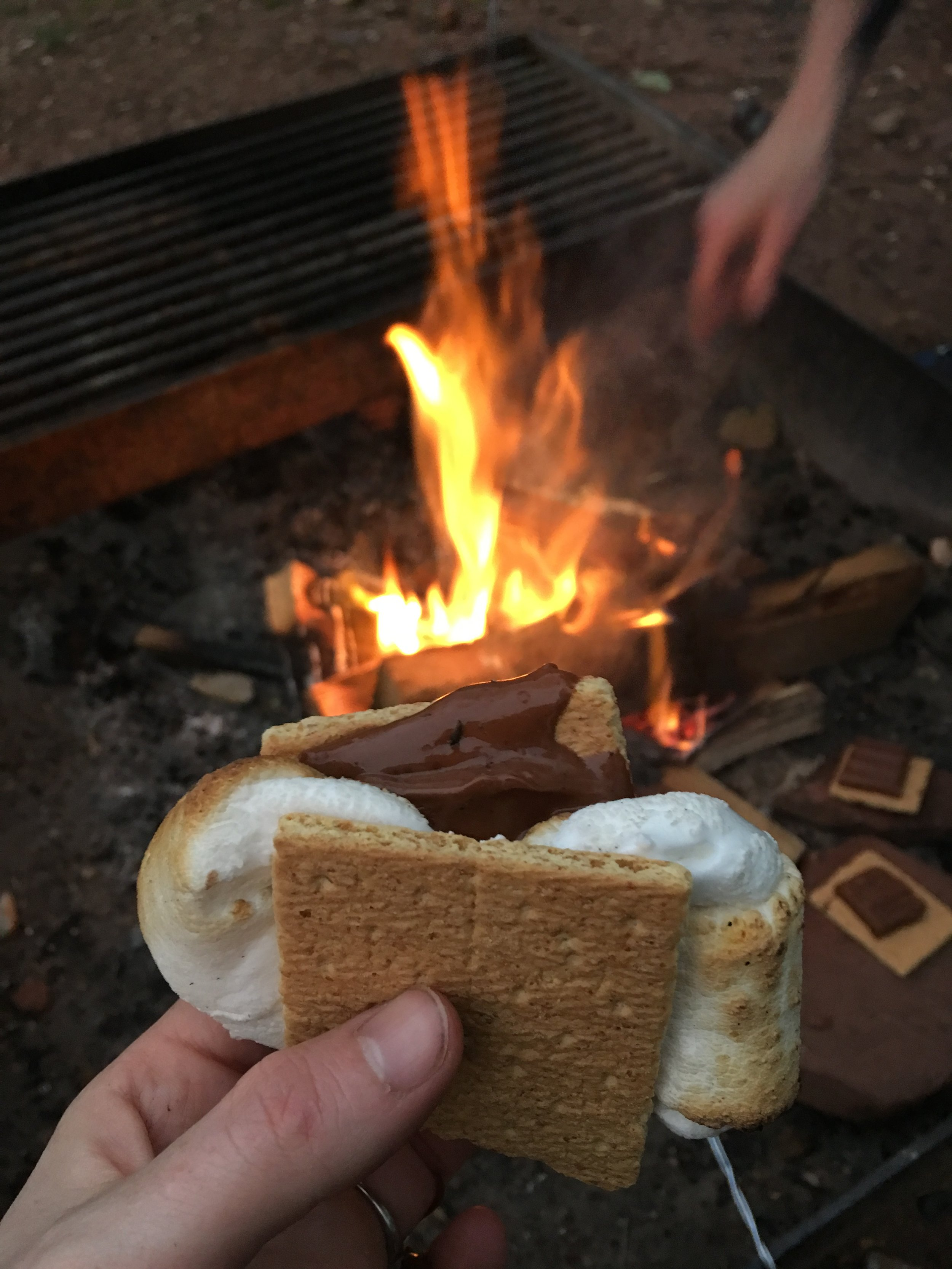 I was a bit overzealous with two marshmallows in one s'more- ''twas delicious yet quite messy!