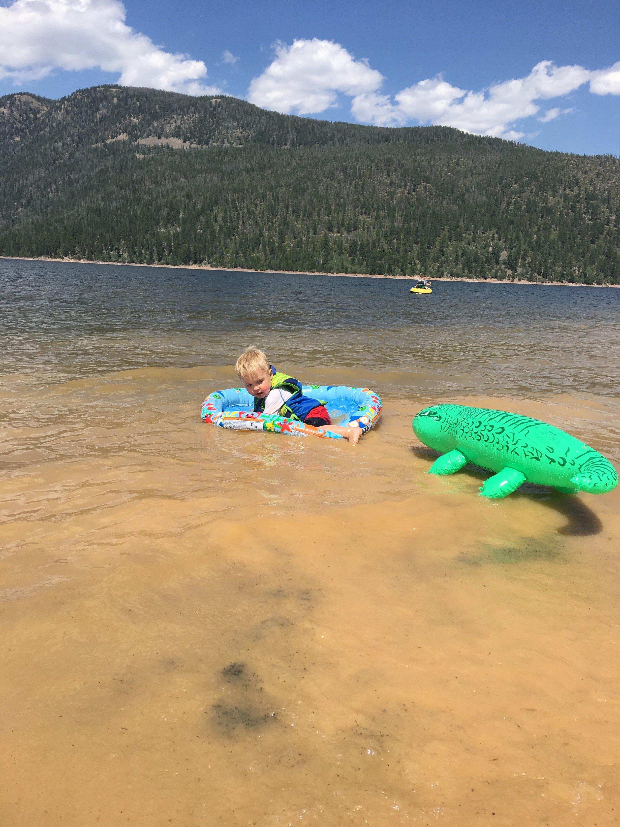 Attack of the fake alligator