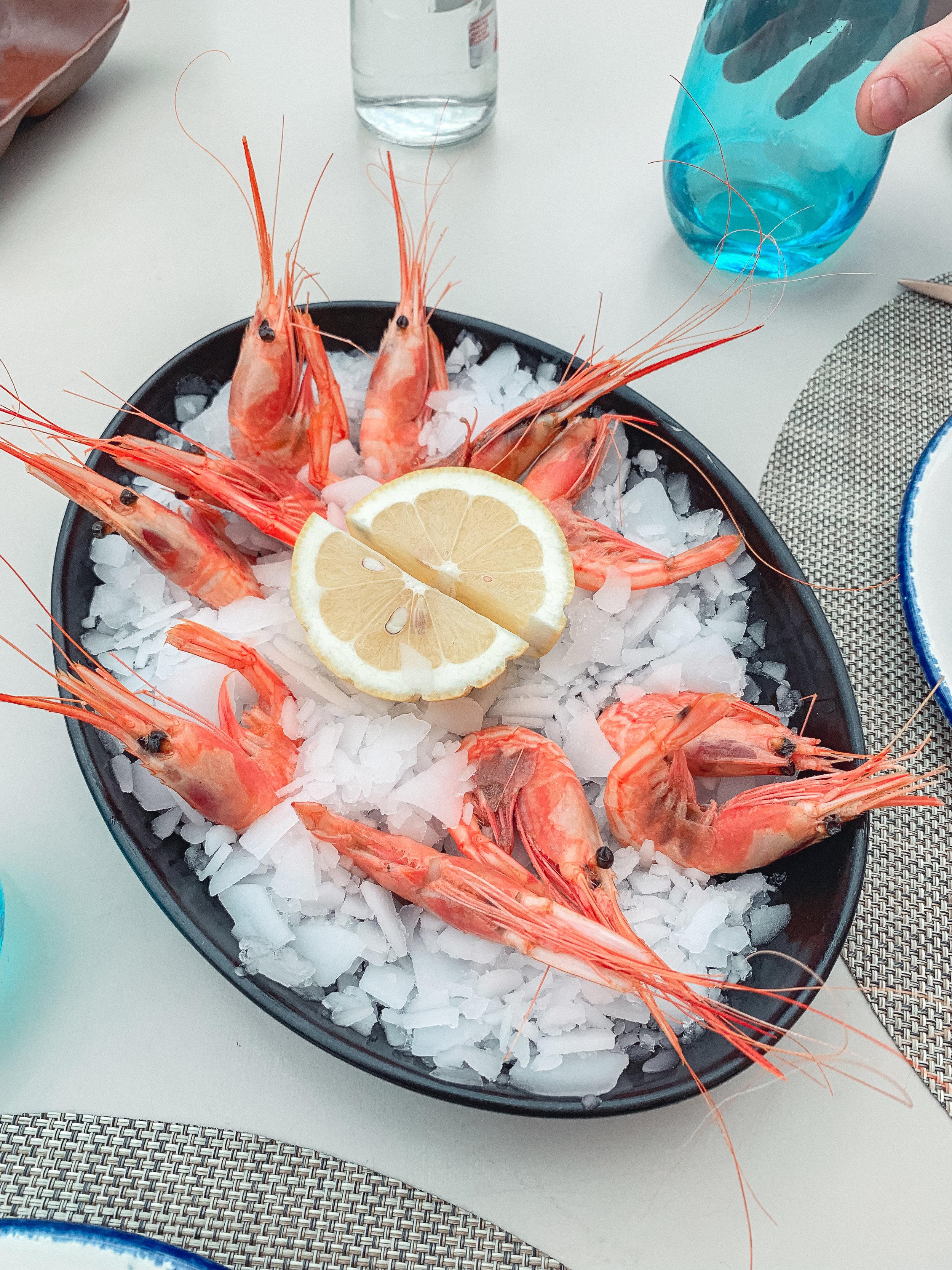 Our appetizer- baby shrimp