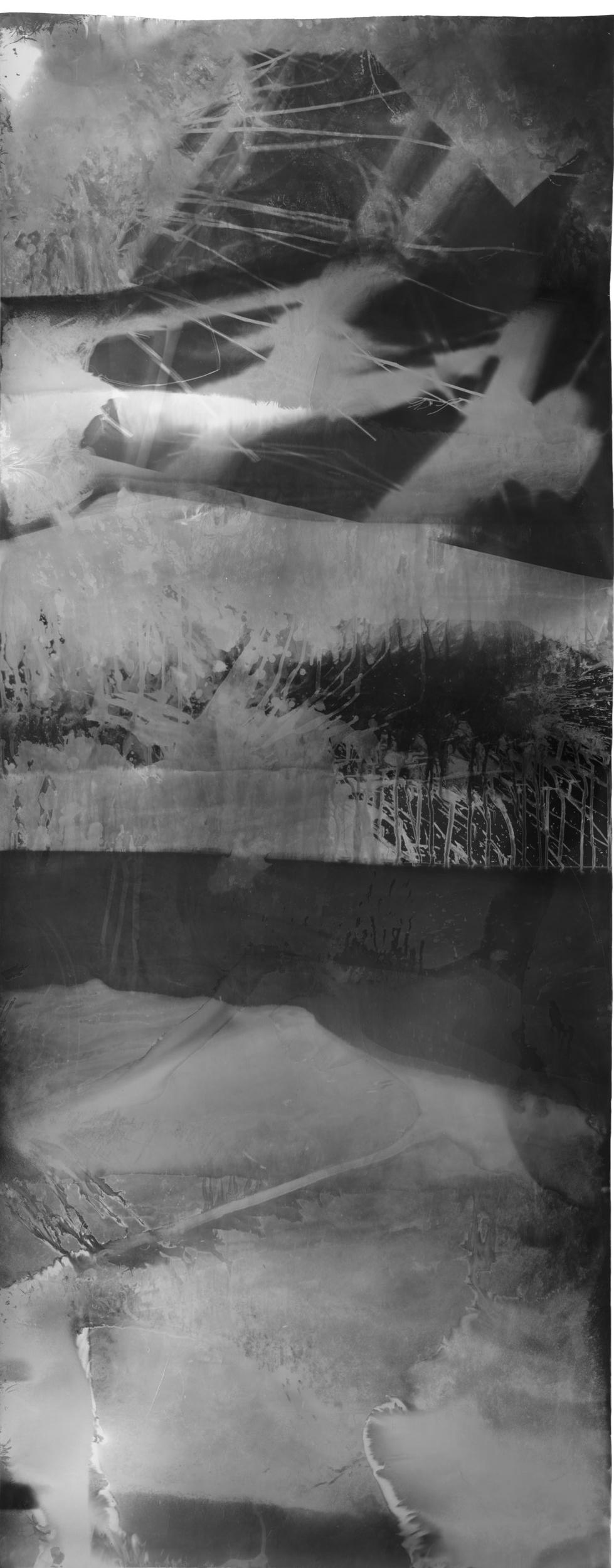 Untitled , 2017, 9.33 feet x 3.5 feet, Silver Gelatin Print