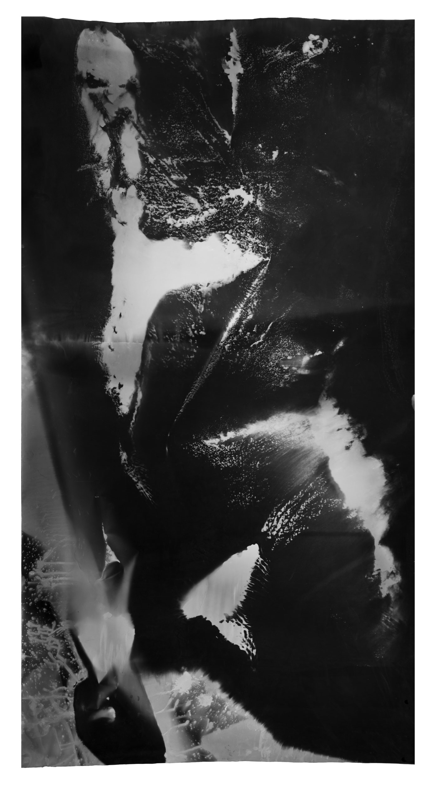 River Test , 2017, 6.83 feet x 3.5 feet, Silver Gelatin Print