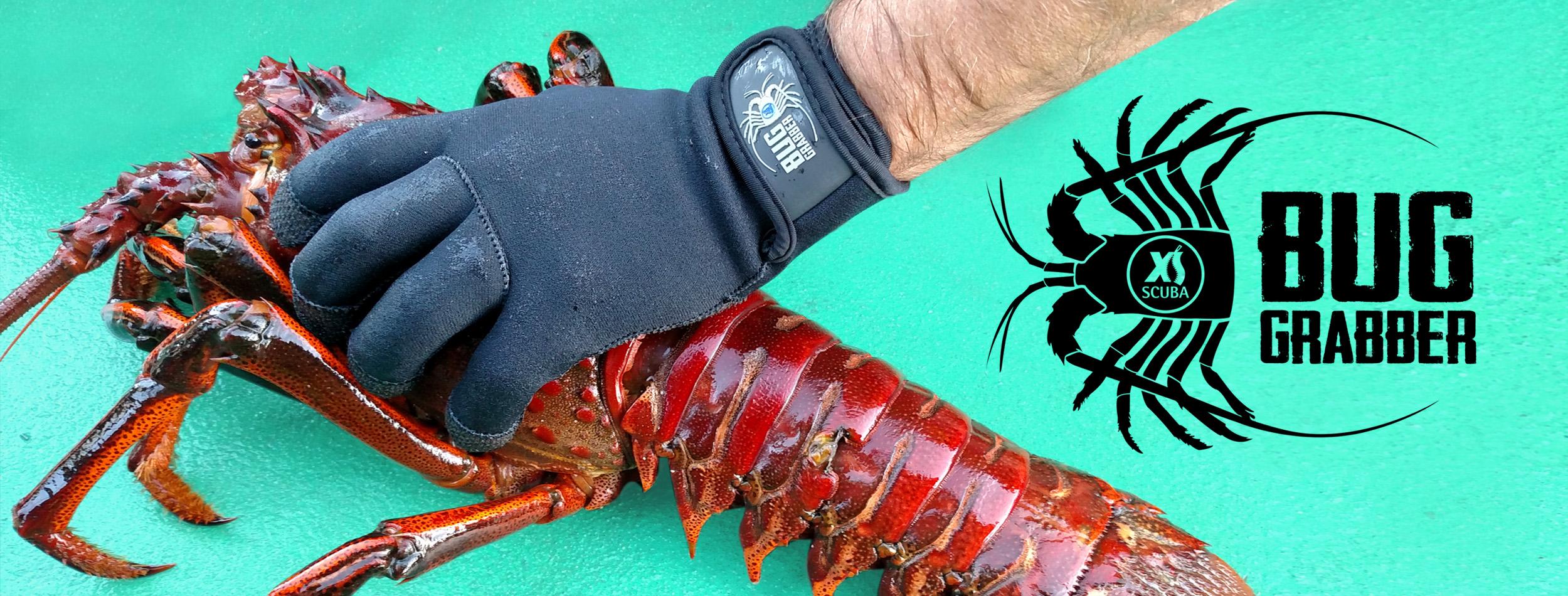 Bug-Grabber-banner.jpg