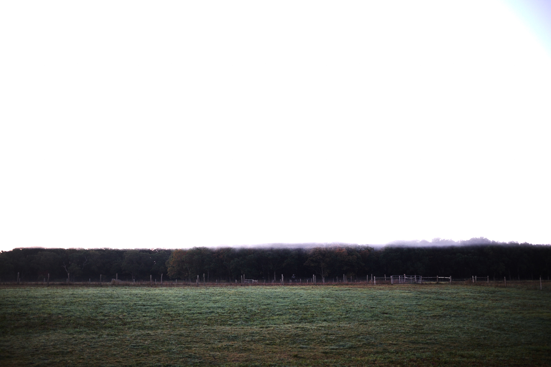 Landscape_005.jpg