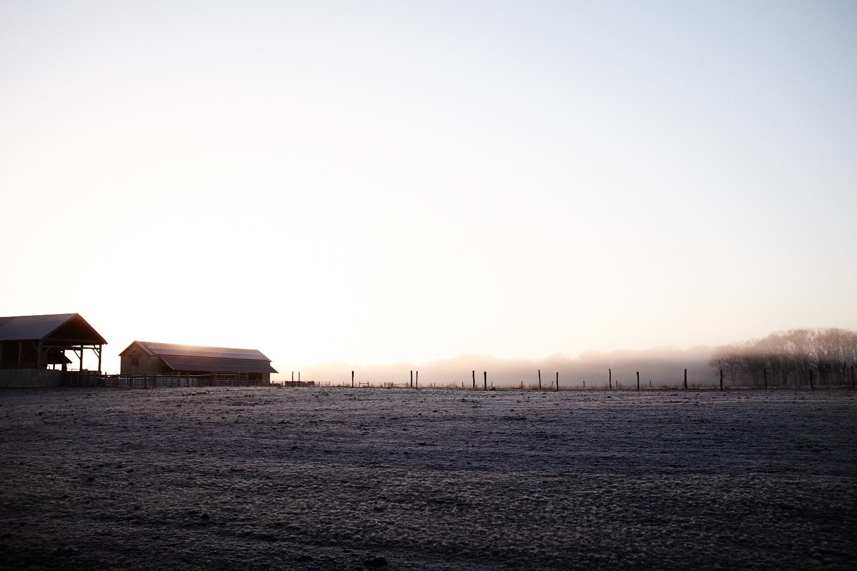 Landscape_001.jpg