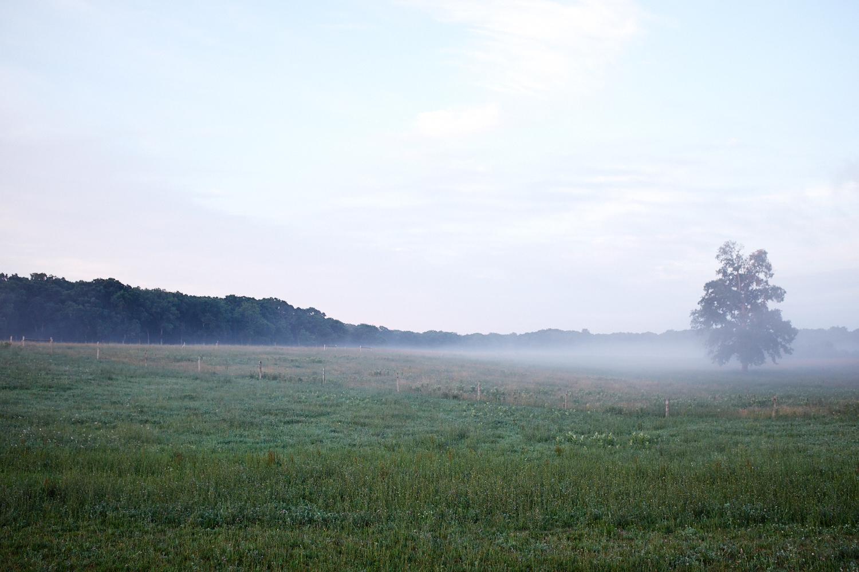 Landscape_009.jpg