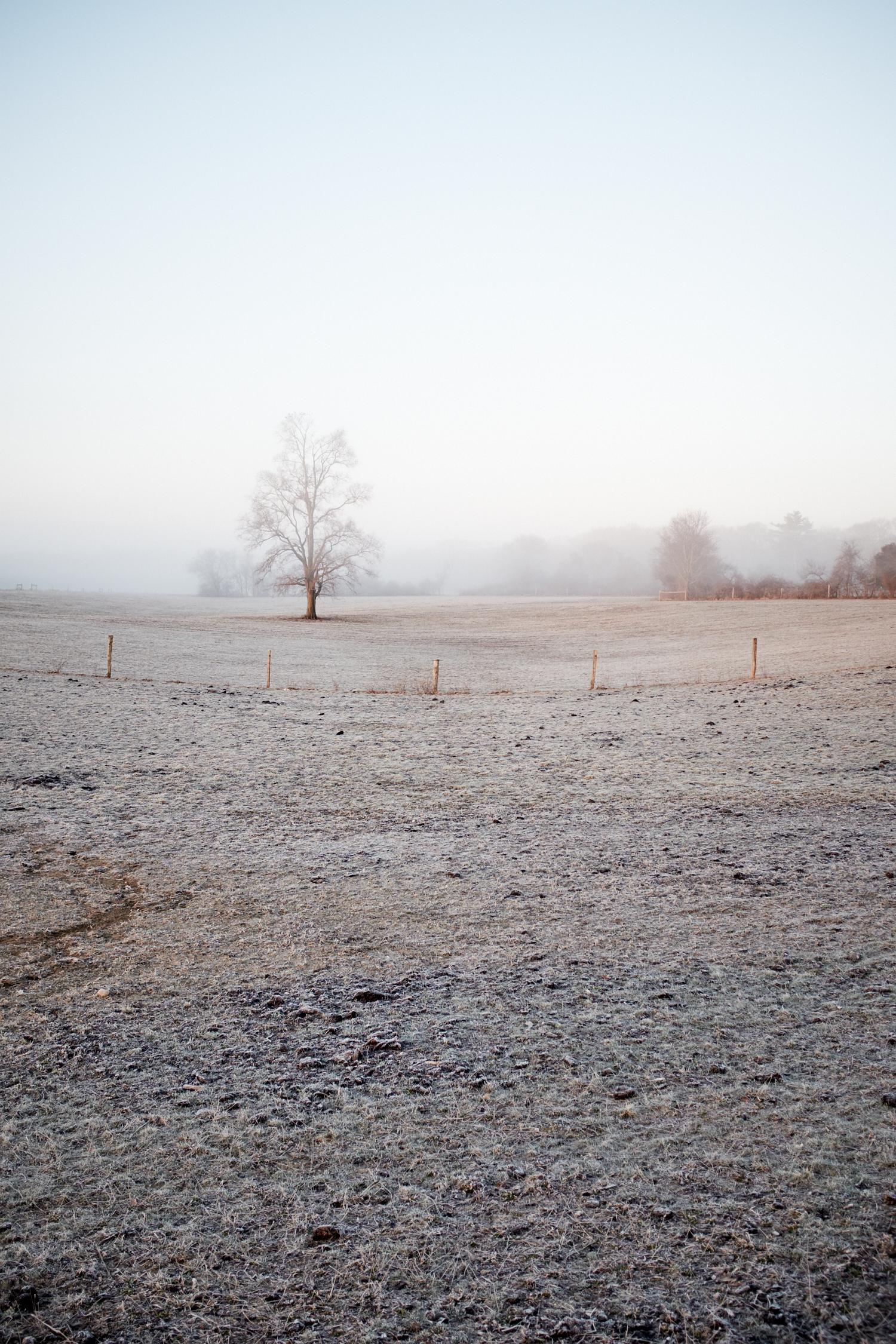 Landscape_011.jpg
