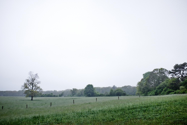 Landscape_016.jpg