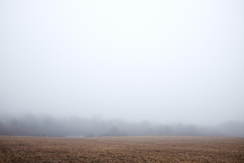 Landscape_023.jpg