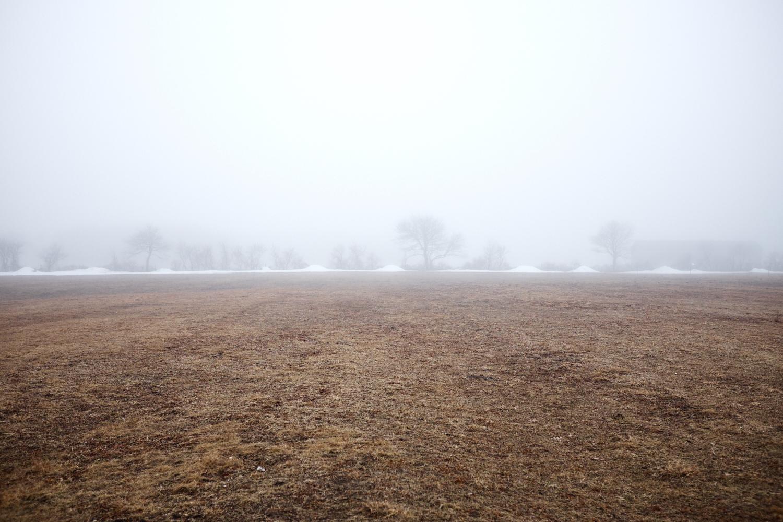 Landscape_031.jpg