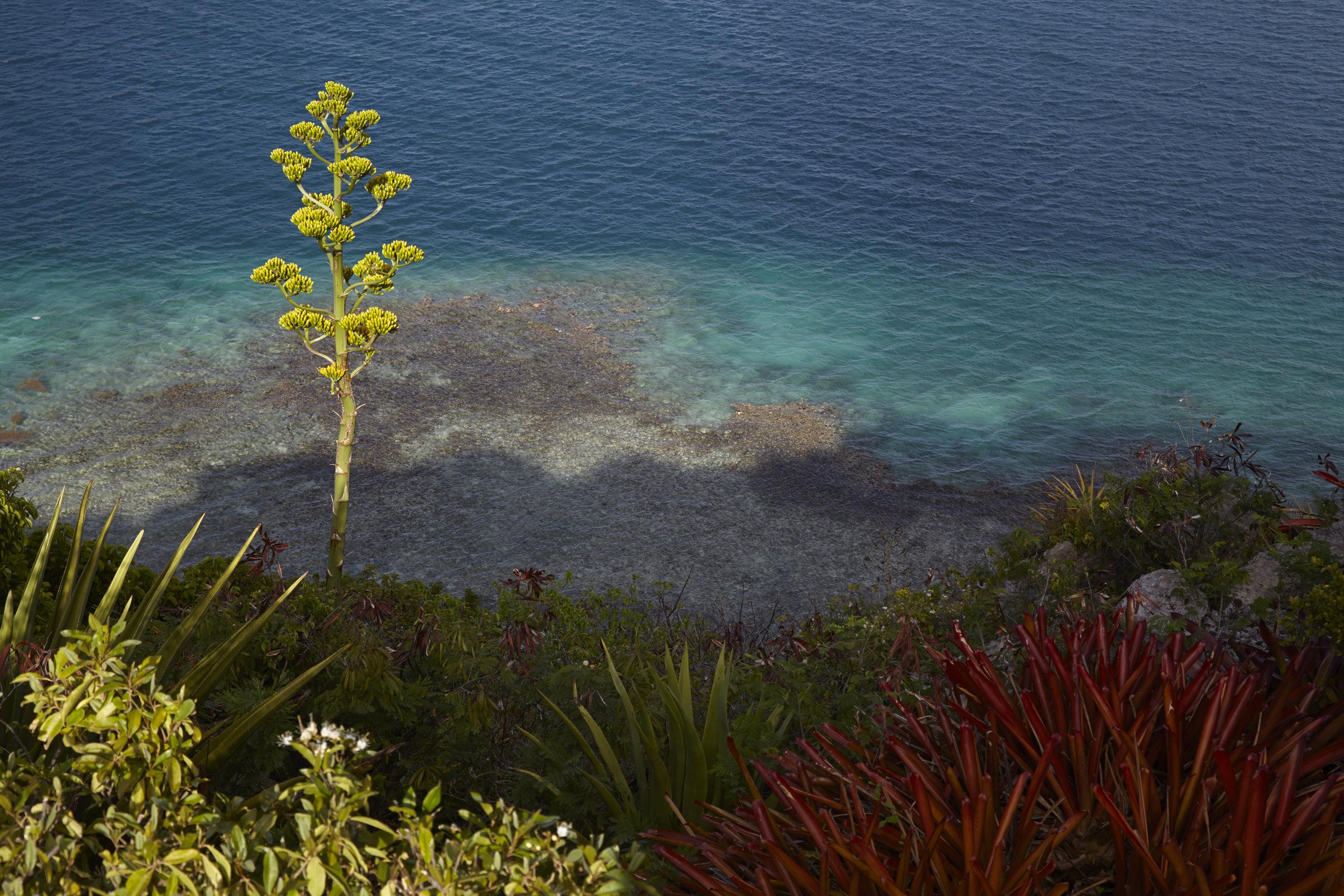 22 Antigua-View 03_072.jpg